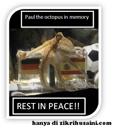 paul, paul the octopus, paul in memory, paul die, paul the octupus dead, sotong ramalan mati, the physic octopus die